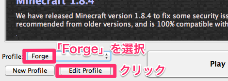 minecraft_forge_profilese
